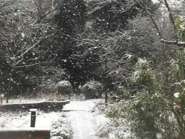 sneeuw15jan2