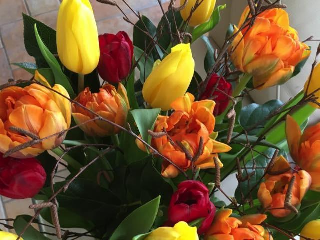 tulpen van john