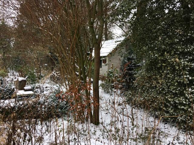 verreschuur15jansneeuw